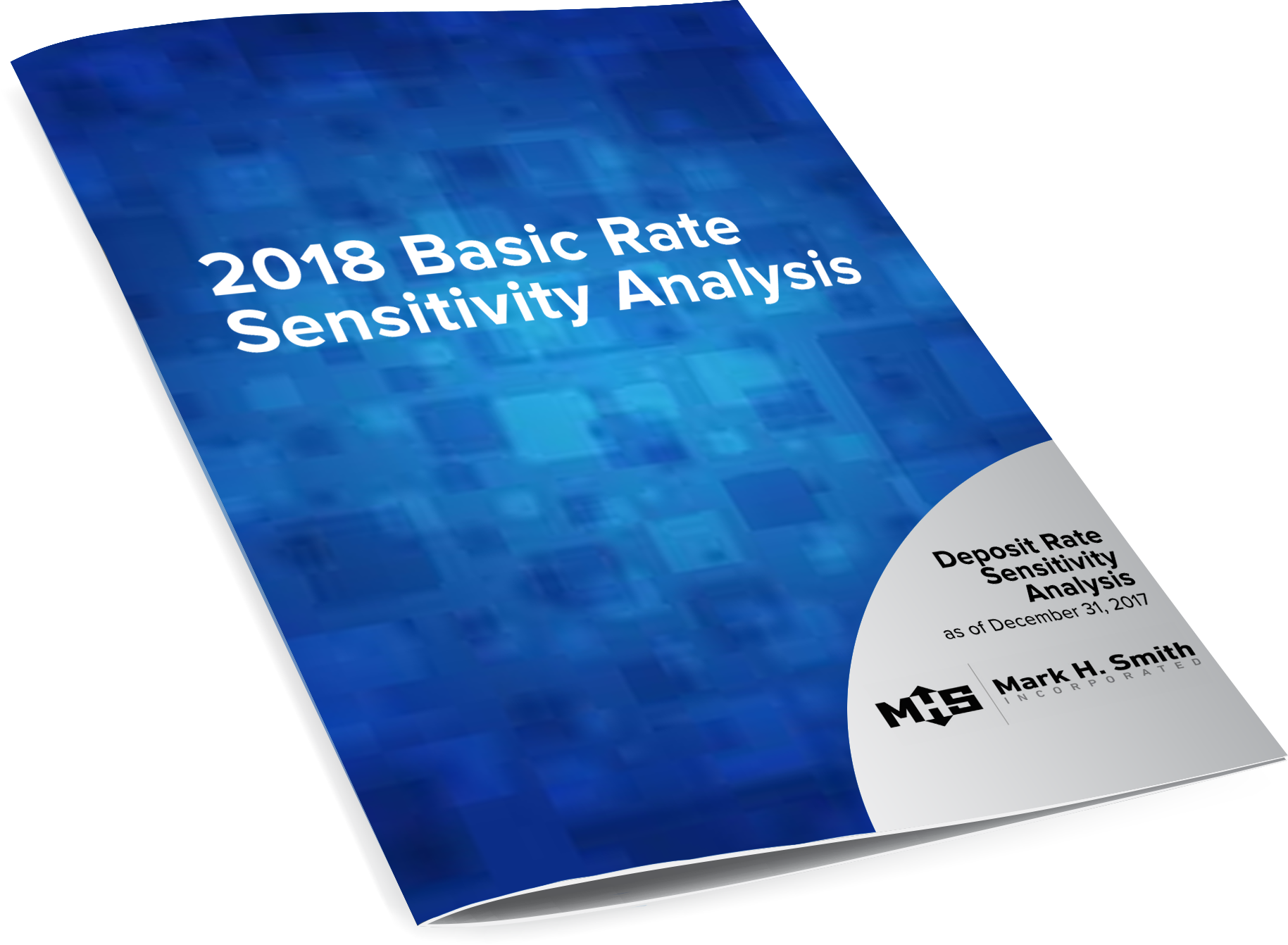 BRSA REPORT. Customized Basic Rate Sensitivity Analysis & Consult 2018