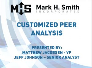 Customized Peer Analysis