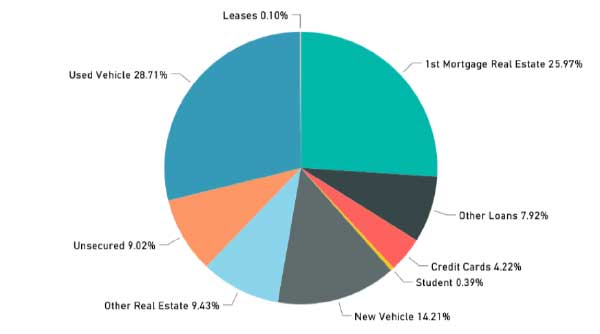 LOAN COMPOSITION AS OF JUNE 2017